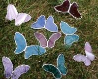 motyle niebiesko-różowe